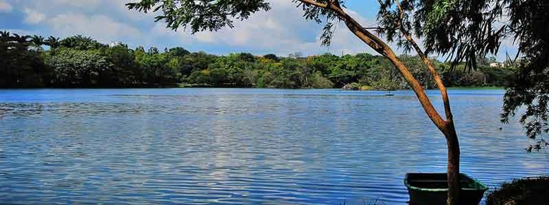 Karanji Lake Mysore, timings, entry ticket cost, price, fee - Mysore  Tourism 2021